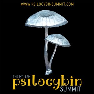 psilocybin summit