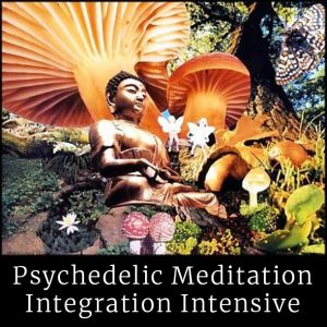 meditation intensive