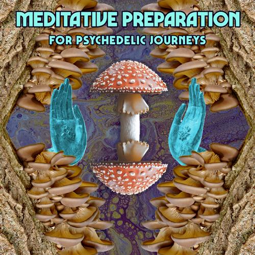 Meditative Preparation for Psychedelic Journeys
