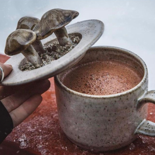 Chocolate Apothecary: Make Your Own Medicine